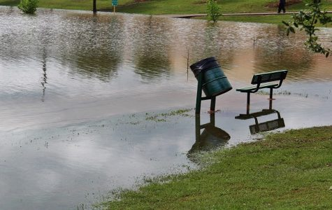 Flooding Disaster in Houston
