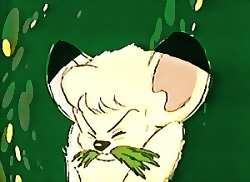 skunkgrassc