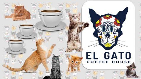 El Gato Coffeehouse