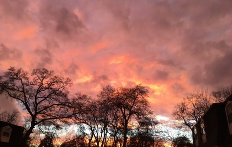 Spring Sunsets
