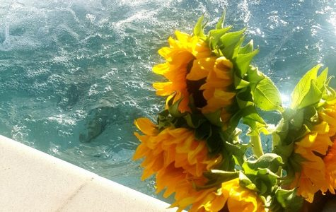 Be the Sunflower!