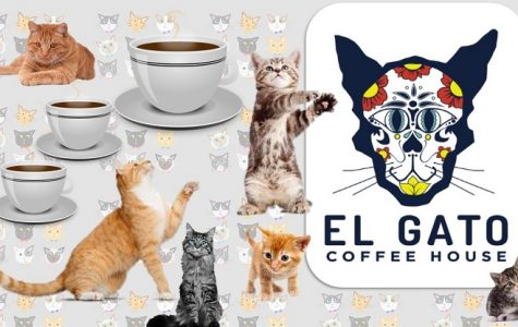 El Gato Coffeehouse