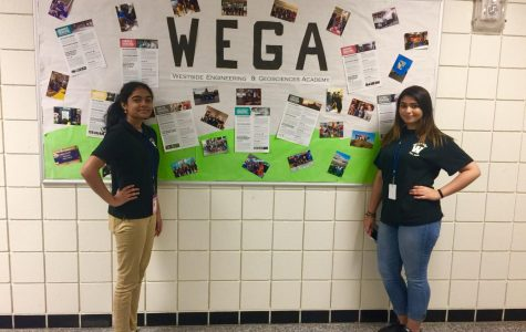 The Women of WEGA!