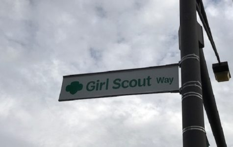 Girls as Boy Scouts