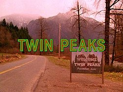 Walking with Fire: A Brief Tribute to Twin Peaks