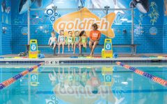 Staff Pick: Goldfish