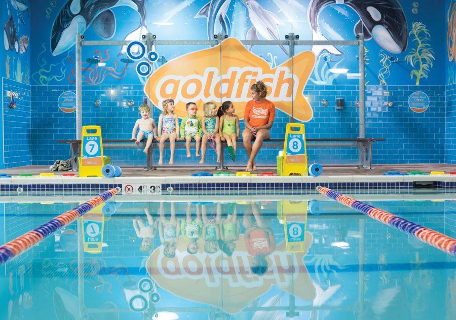 Staff+Pick%3A+Goldfish